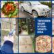 Kuvakollaasi Trivoren hyvinvointikisasta. Kuvassa muun muassa laitettuja ruokia ja kuvia luontoretkiltä.